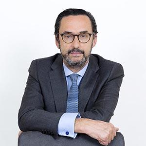D. Enrique Sanz Fernández-Lomana